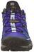 Salomon X Ultra 2 GTX Schoenen violet